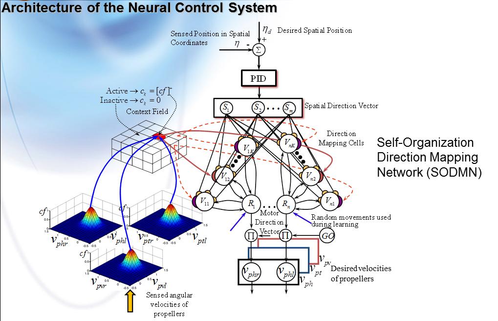 Arquitectuera neuranal