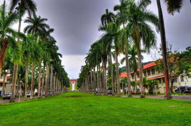 LLuvia-en-Panama